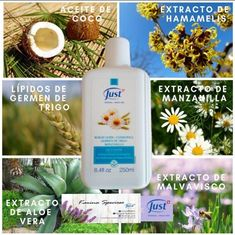 Wellness Products, Spas, Shampoo, Personal Care, Bottle, Health, Mariana, Health And Wellness, Aromatherapy