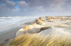 Dynamisch landschap op Schiermonnikoog: in de zomer ontstaan nieuwe duinen op het breedste strand van Europa. In de winter slaat de Noordzee een groot deel van deze jonge duinen weer af tijdens hoog water en storm