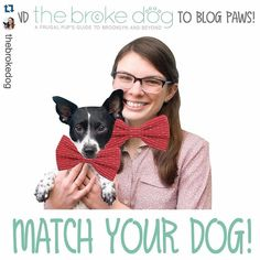 Have you ever wanted to match your dog's bow tie? THIS IS YOUR CHANCE! Details below and at the link in @thebrokedog's profile.  Repost @thebrokedog  Exciting news! I've added ANOTHER fun thank you gift to the GoFundMe campaign! Donate $48 and you will receive a MATCHING BOW TIE SET from @brooklynbowtied that contains one dog bow tie and one human bow tie (self-tie or pre-tied). Matching human bow ties are not normally available so this is your chance! Details at the link in my profile…