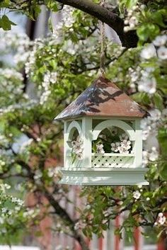 Blossoms for the Birds