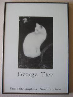 George A Tice Union St. Graphics San Francisco, White Cat Photograph Print, Sign