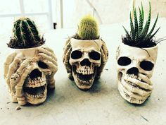 See no evil, hear no evil, speak no evil skull planters Skull Decor, Skull Art, Cactus, Skull And Bones, Hallows Eve, Fall Halloween, Sugar Skull, Memento Mori, House Plants