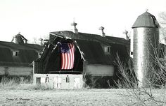 Love this barn in Xenia Ohio. Its been torn down for several years. This flag was hung up right after A few College friends and I trespassed and explored it one day! Awesome part of Ohio history! American Spirit, American Flag, American Pride, A Lovely Journey, Xenia Ohio, Sea To Shining Sea, Tear Down, Old Glory, Old Barns