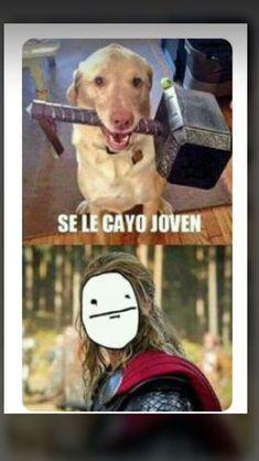 Read from the story Memes de Marvel by MssMarvel (Ana) with reads. Funny Marvel Memes, Avengers Memes, Marvel Jokes, Really Funny Memes, Stupid Funny Memes, Funny Laugh, Funny Images, Funny Pictures, Funny Spanish Memes