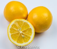 Meyer Lemon :: Search by flavors, find similar varieties and discover new uses for ingredients @ preppings.com