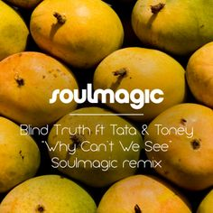 Blind Truth 'Why We Can't We See' (Soulmagic Remix)