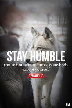 """Stay humble. You're not here to impress anybody except yourself."" Runitout.com"