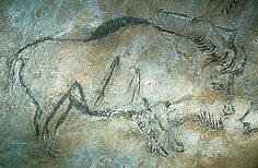 Peinture rupestre de Niaux