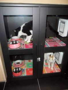 Cat Food Station - We've gathered some creative food stations for you not to worry about food bowls anymore. Diy Pour Chien, Cat Feeding Station, Dog Station, Cat Feeder, Cat Room, Food Stations, Pet Furniture, Furniture Dolly, Furniture Removal