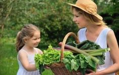Growing Up with Healthy Eating Habits. A Healthy Lifestyle Begins Early in Life. Eating Vegetables, Growing Vegetables, Fresh Vegetables, Shade Tolerant Plants, Social Well Being, Mother Daughter Relationships, Square Foot Gardening, Garden Quotes, Healthy Eating Habits