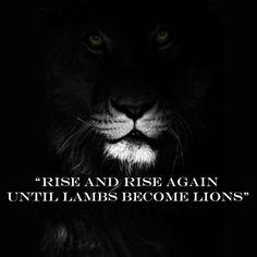 Lute e lute novamente, até cordeiros virarem leões