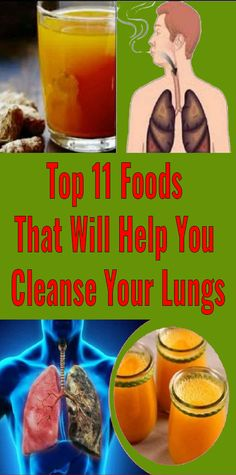 Health Top 11 Foods That Will Help You Cleanse Your Lungs What you can do, is use these 11 things to cleanse your lungs of all the pollution and smoke they inhale on a daily basis. Coconut Benefits, Matcha Benefits, Health Benefits, Health Tips, Health And Wellness, Health And Beauty, Health Fitness, Health Care, I Quit Smoking