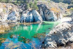A Wanderer's Guide To Point Lobos State Reserve, California