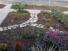 1000 ideas about no grass yard on pinterest no grass garden pinterest grasses and gardens