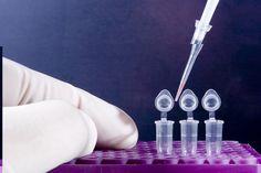 [HOT] Chi tiết qui trình PCR phát hiện vi khuẩn gây bệnh gan tụy cấp AHPND/EMS   Vietnam Aquaculture Network - Mạng Thủy sản Việt Nam