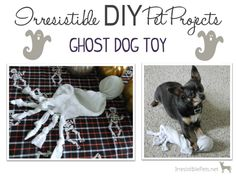 DIY Ghost Dog Toy So gonna do this for my dogs! Dog Crafts, Animal Crafts, Dog Insurance, Insurance Business, Ghost Dog, Animal Projects, Diy Stuffed Animals, Dog Owners, Dog Toys