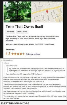 funny tumblr post tree that owns itself property deeded to tree