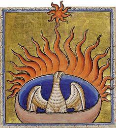 Phoenix detail from Aberdeen Bestiary - Phoenix (mythology) - Wikipedia