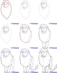 Image result for draw a lion