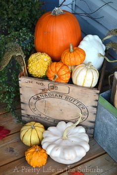A crate and some pumpkins