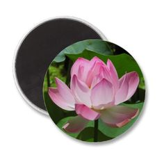 Pink Lotus Bloom Refrigerator #Magnet $2.95