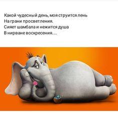 Dinosaur Stuffed Animal, Jokes, Humor, Animals, Russian Jokes, Animales, Husky Jokes, Animaux, Humour