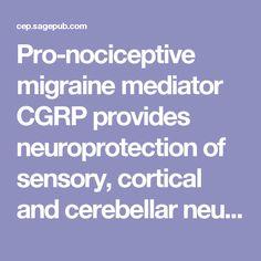 Pro-nociceptive migraine mediator CGRP provides neuroprotection of sensory, cortical and cerebellar neurons via multi-kinase signaling