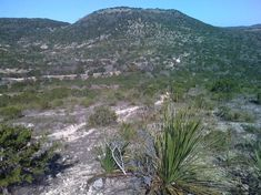 Hill Country State Natural Area (Bandera) - 2020 All You Need to Know BEFORE You Go (with Photos) - TripAdvisor