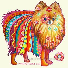 """""""Chelsea"""" - 5 x 5 inches - Prismacolor Colored Pencils on Paper - Original Colorful Pomeranian Drawing by Thaneeya McArdle"""
