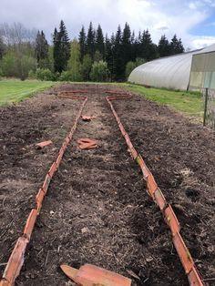 Railroad Tracks, Garden, Garten, Lawn And Garden, Gardening, Outdoor, Gardens, Tuin, Train Tracks
