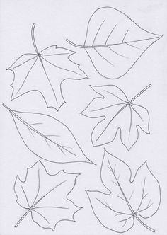 Listy Leaves Template Free Printable, Leaf Template, Flower Template, Fall Leaves Drawing, Leaf Drawing, Autumn Crafts, Autumn Art, Felt Flowers, Paper Flowers