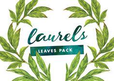 Laurels - Watercolor Leaves @creativework247