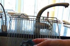 Les 25 meilleures id es de la cat gorie nettoyage des grilles de four sur pinterest four - Nettoyer les grilles du four ...