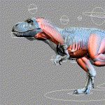 Trex Made with Maya Muscle System 11-21-12 by joel3d.deviantart.com on @DeviantArt