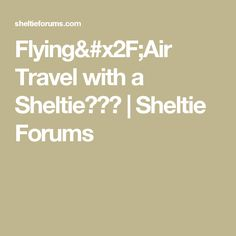 Flying/Air Travel with a Sheltie??? | Sheltie Forums