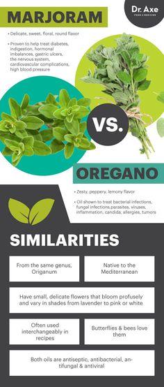 Marjoram vs. oregano - Dr. Axe http://www.draxe.com #health #holistic #natural