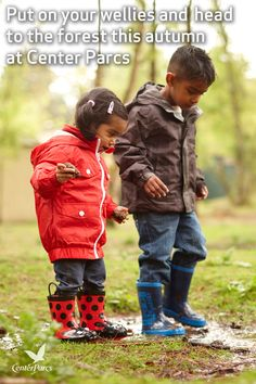 Put on your coats and wellies and head to the forest this autumn. Watch the forest transform from green to golden and feel the leaves crunch under your feet on a woodland walk with the little ones.