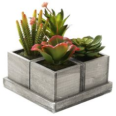Set Of 4 Realistic Artificial Mixed Succulent Plants With Rustic Brown Wood Plan. Set Of 4 Realist Rustic Planters, Diy Planters, Planter Pots, Succulent Pots, Planting Succulents, Reclaimed Wood Kitchen, Rustic Wood, Natural Wood Table, Wood Shop Projects
