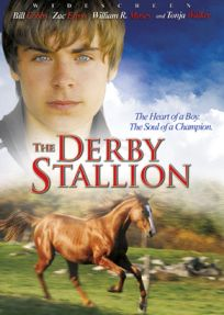 An alcoholic former horse-trainer perceives in a fifteen-year-old boy a unique gift of horsemanship and makes it possible for the boy to conceive his dream and pursue it.