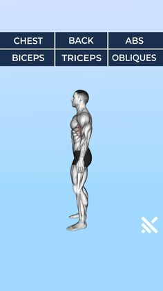 Fitness Workouts, Abs And Cardio Workout, Gym Workout Chart, Plyometric Workout, Workout Routine For Men, Gym Workout Videos, Gym Workout For Beginners, Muscle Gain Workout, Muscle Booster