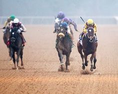 Pippin Trio Back in Bayakoa  https://www.racingvalue.com/pippin-trio-back-in-bayakoa/