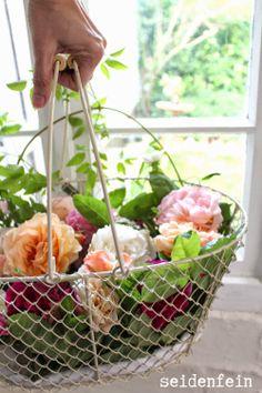 seidenfein 's Dekoblog: zauberhafte Gartenrosen * garden & roses