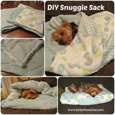 23 Awesome DIY Pet Projects To Keep Your Furry Friends Happy Does your pup get chilly? Make this DIY dog bed snuggle sack to keep frosty paws toasty during the depths of winter. Dog Crafts, Animal Crafts, Snuggles, Diy Pour Chien, Diy Dog Bed, Diy Bed, Pet Beds Diy, Animal Projects, Craft Projects