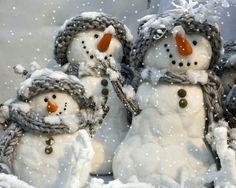 Animații de iarnă – Citate Impresionante