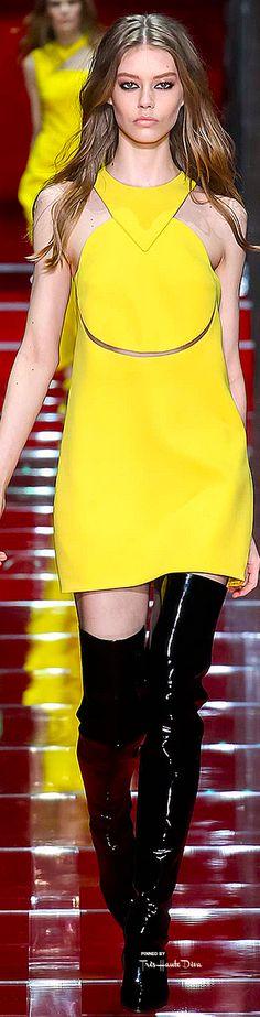 Versace Fall 2015 Ready-to-Wear Fashion Show