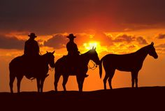 Illustration of Vector silhouette of cowboy riding in the desert vector art, clipart and stock vectors. Future And Drake, Westerns, Cowboy Pictures, Cowboy Pics, Horse Pictures, Geography Activities, Horse Wallpaper, Sunset Wallpaper, Texas History