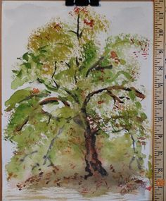 Watercolor painting of Tree by Pauline by TheIDconnection on Etsy, $20.00
