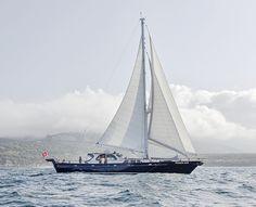 Pegasus Blue, Cavalier 92