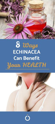 Echinacea is not a wonder drug. It is a natural flowering plant which can be used for a variety of different ailments. It's not a replacement for medical care, but it can still help body and mind as a supplement. Throat Problems, Flu Symptoms, Cystitis, Natural Antibiotics, Bacterial Infection, Healthy Lifestyle Tips, Medical Care, Health Benefits, Planting Flowers