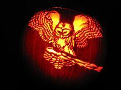 Owl Pumpkin Stencil, Owl Pumpkin Carving, Pumpkin Carving Contest, Pumpkin Art, Pumpkin Head, Halloween Pumkin Ideas, Halloween Stencils, Halloween Images, Halloween 2